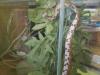 DOBRNA 7 - Snake in kindergarten Dobrna